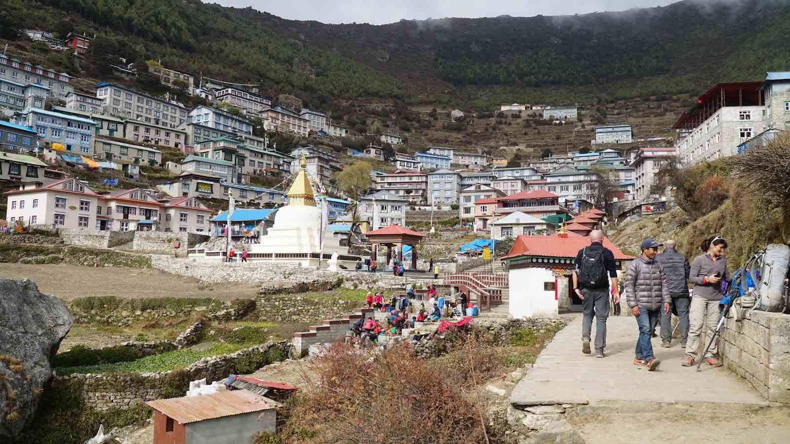 Namche: a pretty decently sized town carved right into the side of a mountain