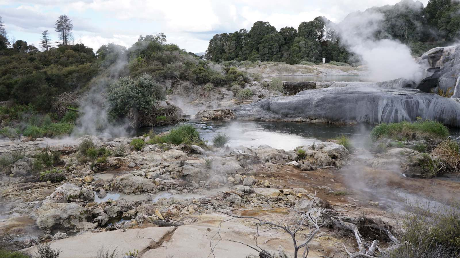 There was a park in Rotorua there called Te Puia which had a ton of hotspots like this