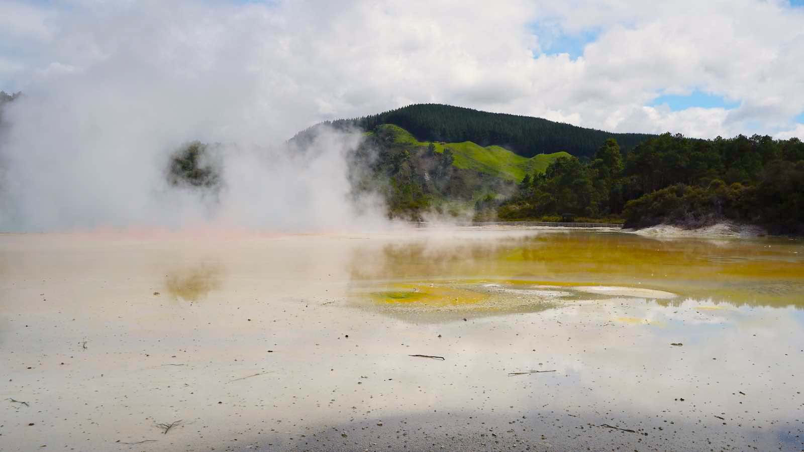 There were large swaths of boiling water like this all over Wai-o-tapu, often with different colors of green, yellow, orange, brown, like someone spilled paint in a lake