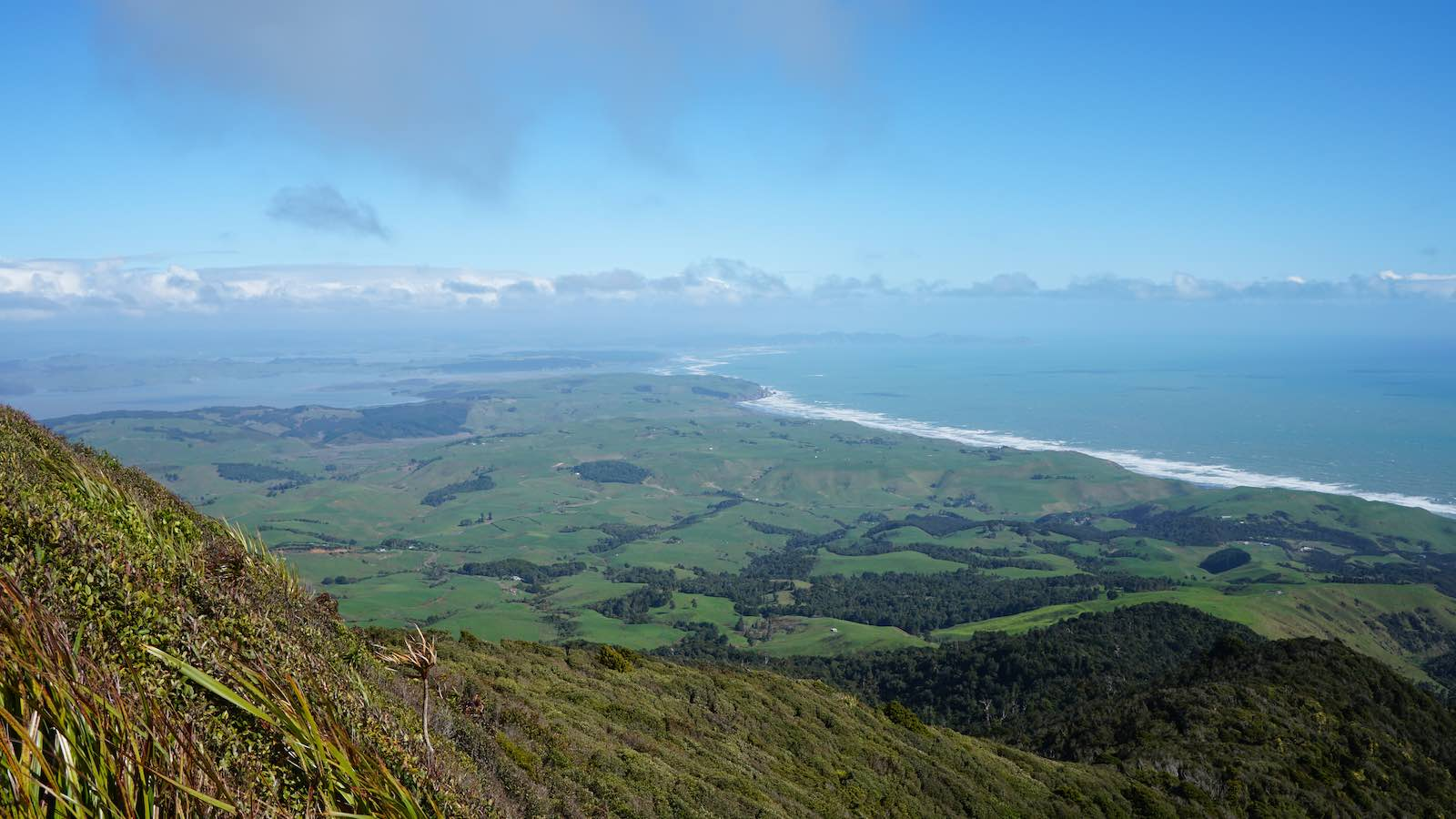 Still a long road ahead. I took this photo halfway up a dormant volcano outside of Raglan, New Zealand.